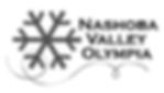 NVO-logo-snowflake-RESIZED_edited.png
