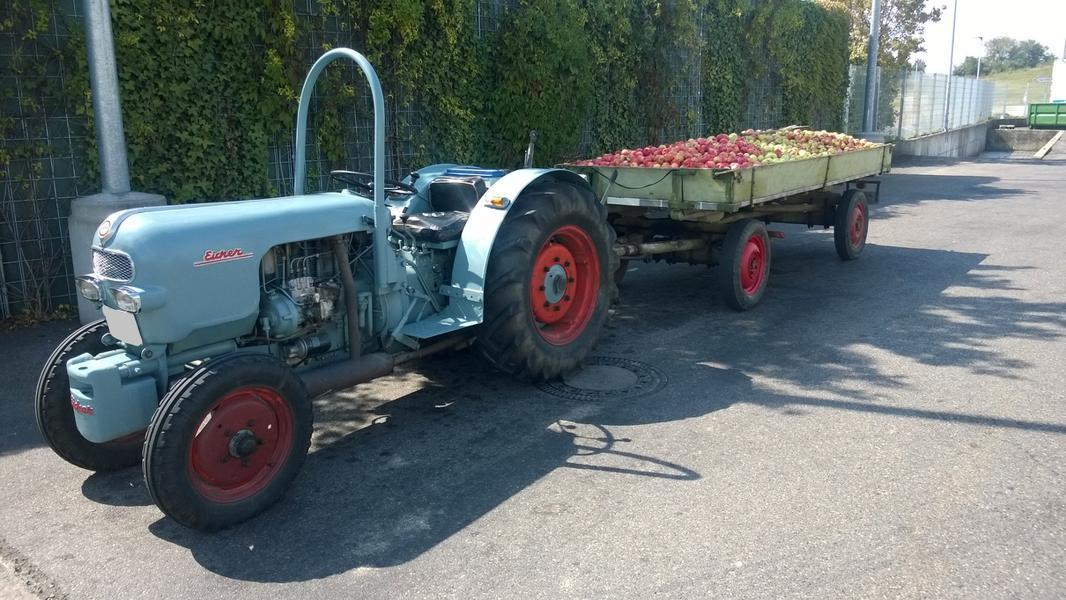 Eicher beim Obst fahren