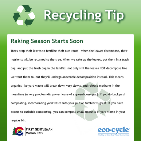 Recycle_Tips-1.png