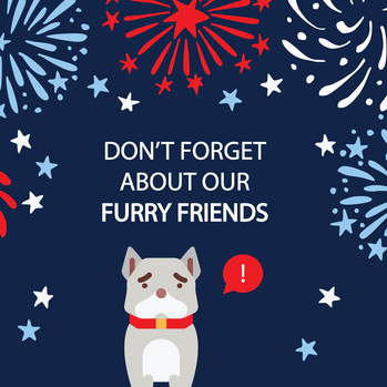 First Gent_Animal&Fireworks-Graphic_4th-