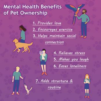 Gov-Mental_Health_Benefits_Of_Pet_Owners