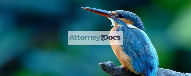 AD_Blog_Migratory-Birds.png