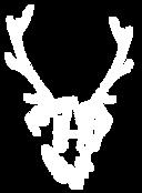 deer dog logo-Recovered_edited.png