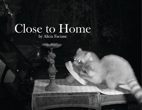 Close to Home, Book