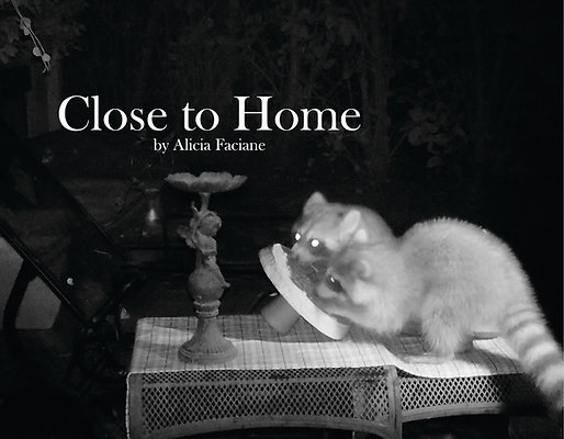Close to Home, Book