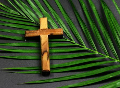 Palm Sunday Mass Online a Success