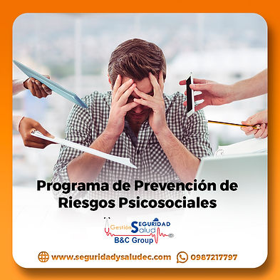 programa de prevencion de riesgos psicosociales.jpg