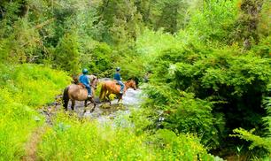 4-Star Pocono Mountain Villas Stay Plus 50$ Resort Credit From $77 Per Night