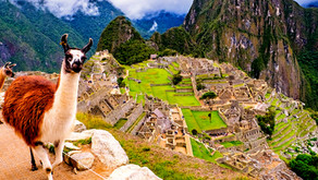 Wow! 7-Day Peru Guided Tour with Hotels and Air from $1499!