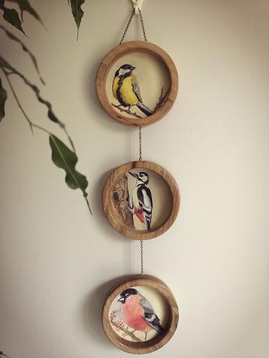 mésange peinture oiseaux Celia Taillandier