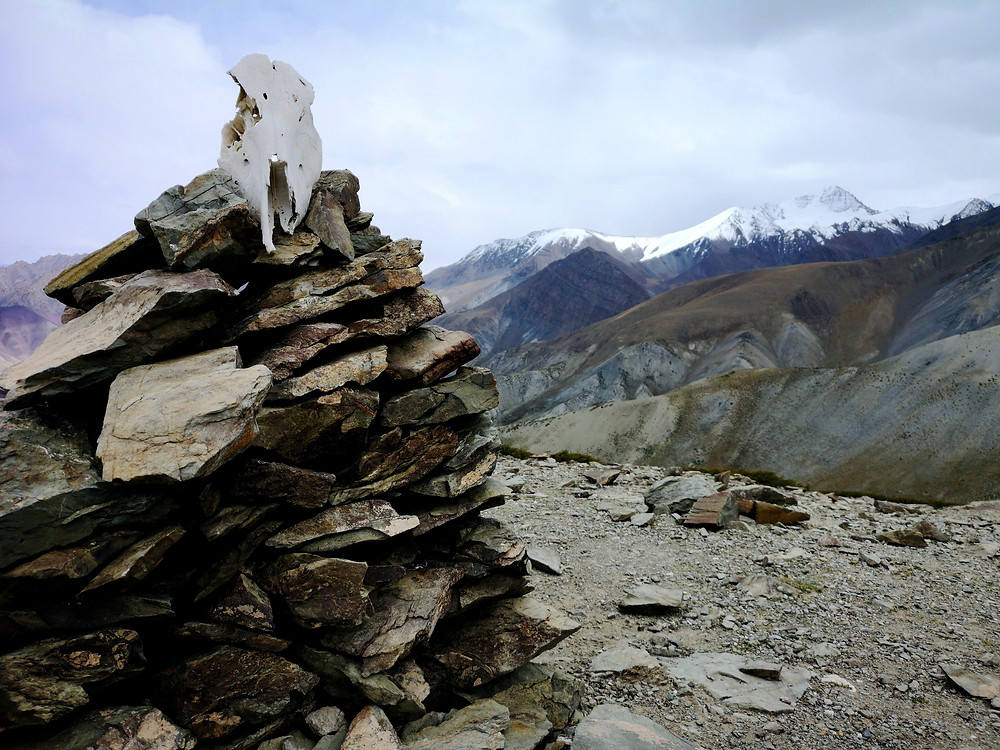 A skull on a pile of rocks in front of Stok Kangri