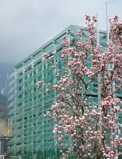 Academy of Science Innsbruck