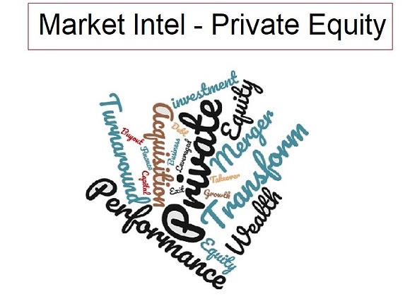 Private Equity 2020 - A Market Review