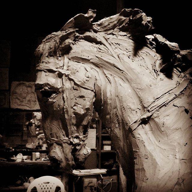 Cabeza de caballo. 2015.jpg