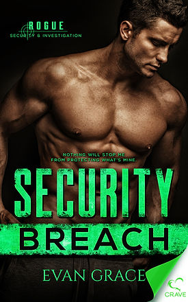 Security Breach Front Cover.jpg