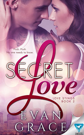 Secret Love FINAL eBook.jpg