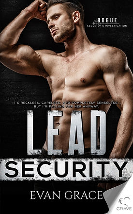 Lead Security cover