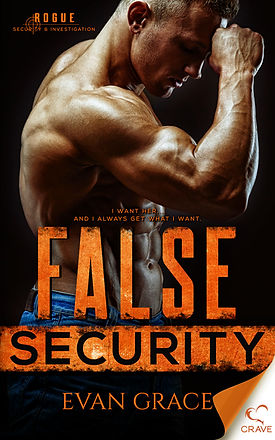 False Security front cover.jpg