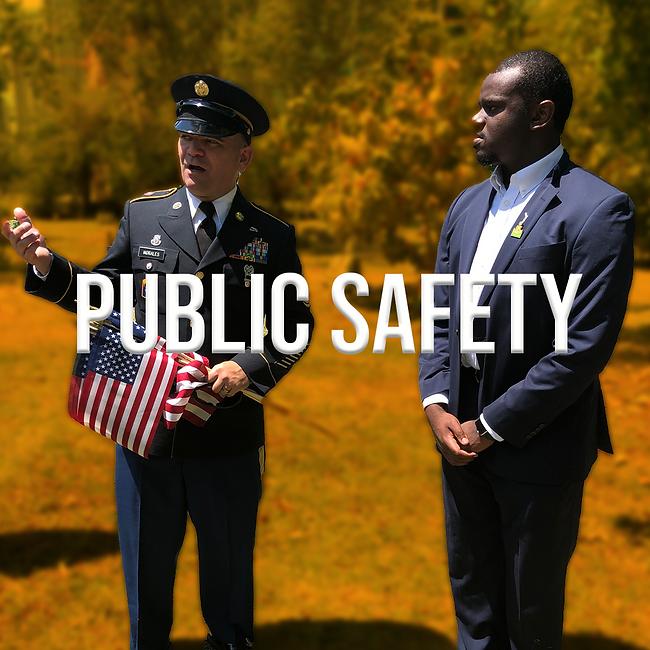 Public Safety WEB.png