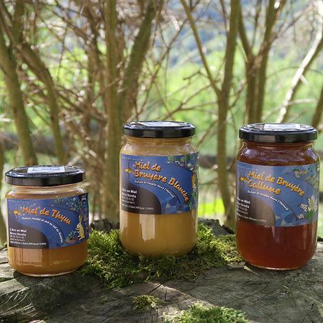 miels bio nature et progrès aveyron occi