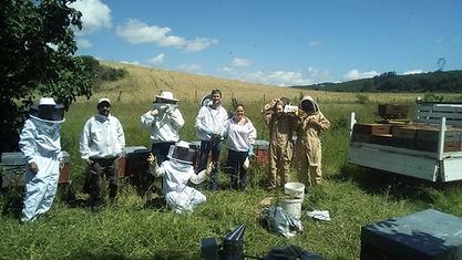 formation débutant apiculture