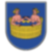 Coat_of_arms_of_Bagnes.svg_.png