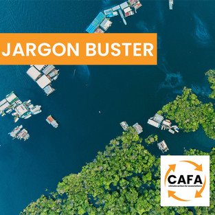 Climate Action Jargon Busters