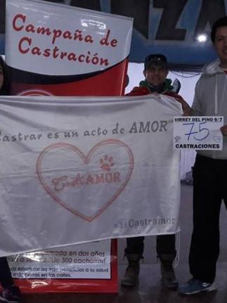 Cloak and Scalpel: Clandestine spay/neuter events in Argentina  (versión en español a continuación)