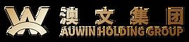 澳文集团logo-金.png