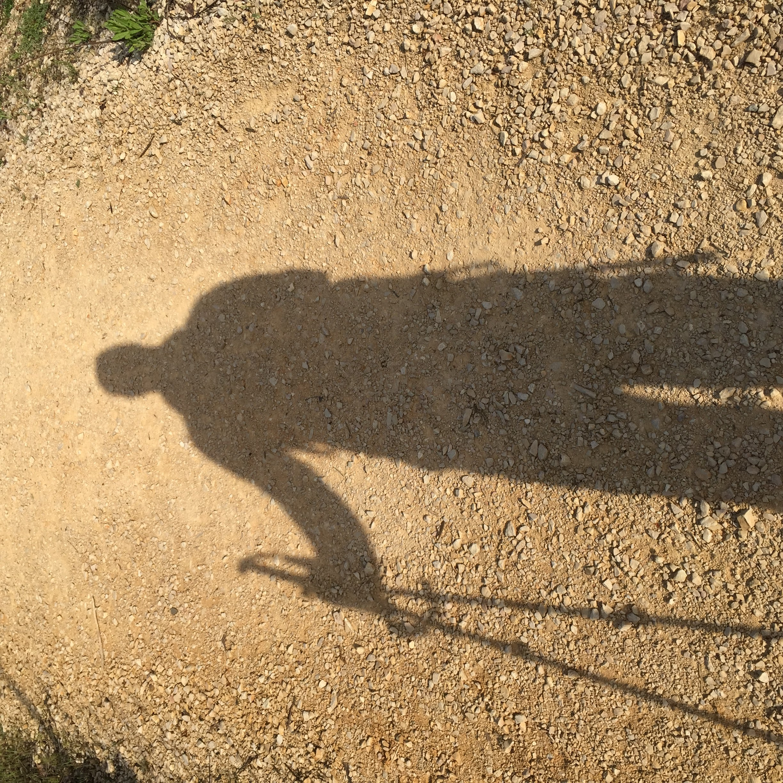 camino shadow