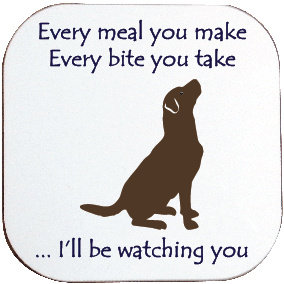 HUNGRY CHOCOLATE LABRADOR DOG COASTER