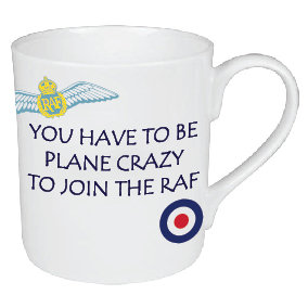 YOU HAVE TO BE PLANE CRAZY TO JOIN THE RAF MUG
