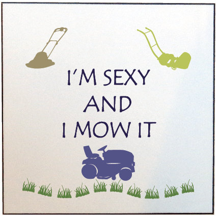 I'M SEXY AND I MOW IT PICTURE PANEL