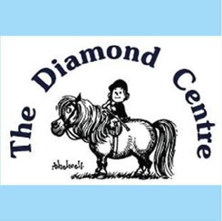 Diamond Centre for Disabled Riders Autumn Fair