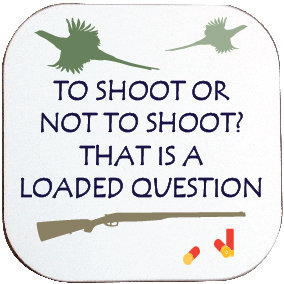 LOADED QUESTION SHOOTING COASTER