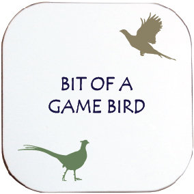 BIT OF A GAME BIRD COASTER