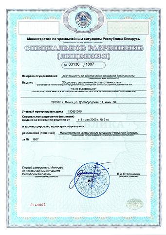 Лицензия ООО ВЯЛЕС-КОНСАЛТ 1 лист