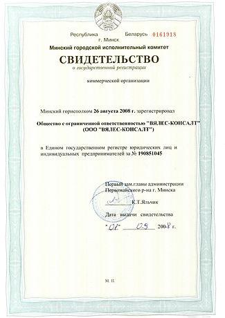 """свидетельство о государственной регистрации ООО """"ВЯЛЕС-КОНСАЛТ"""""""