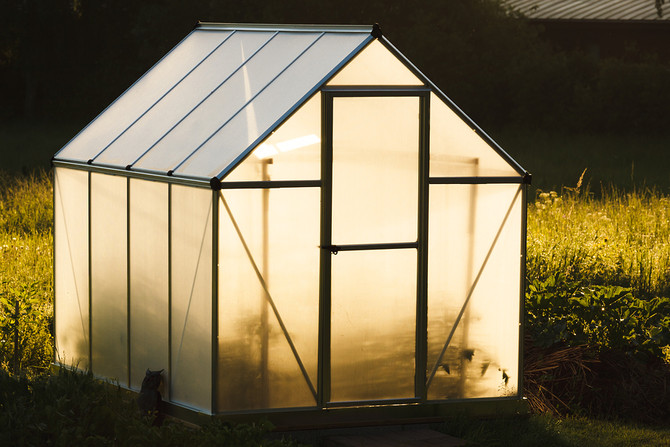How to Know If You're Getting a Good Grow Tent