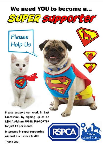 super supporter poster.jpg