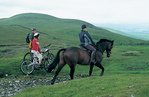 Horse Riding Trails