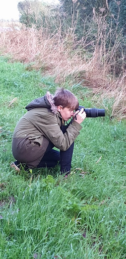 Hen Crouching Caythorpe