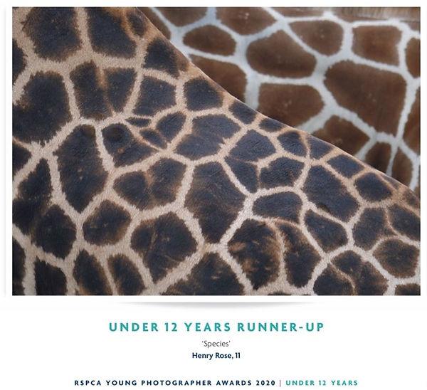 RSPCA Brochure - Hen Page.JPG