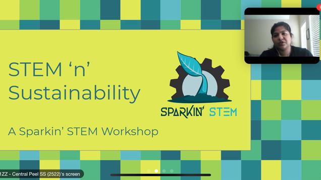 STEM 'n' Sustainability