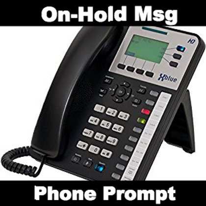 Phone Prompts & On-Hold Messages (one time fee)
