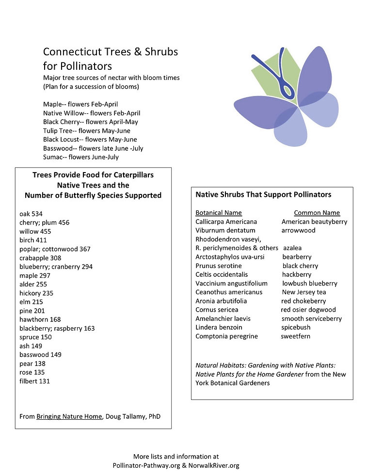 Microsoft Word - shrubs & Trees for Poll