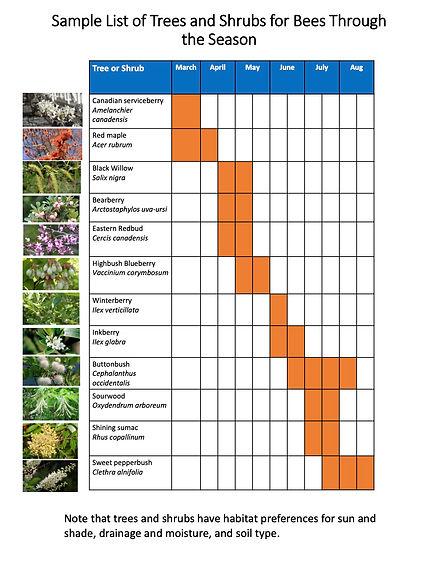 Trees for Bees Through the Season- hando