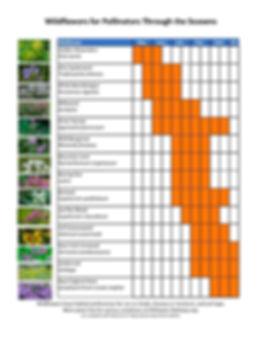 Microsoft Word - Wildflower list PP.docx