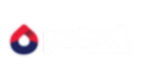 Petrol-Logo.png