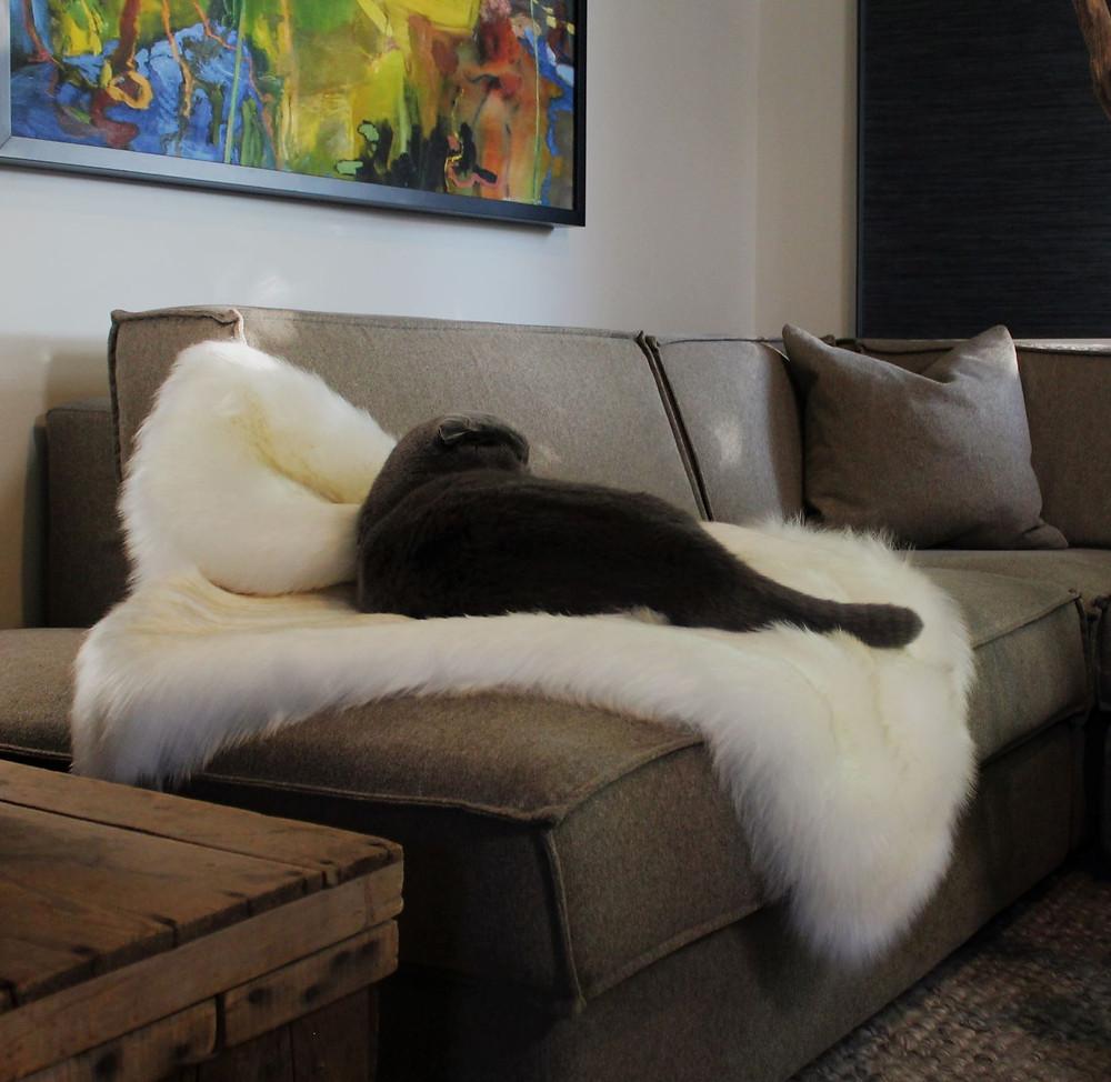 A black cat loving a faux fur blanket Kneadie
